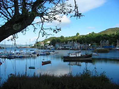 Tarbert (Loch Fyne) harbour.<br /> 4th August 2005.